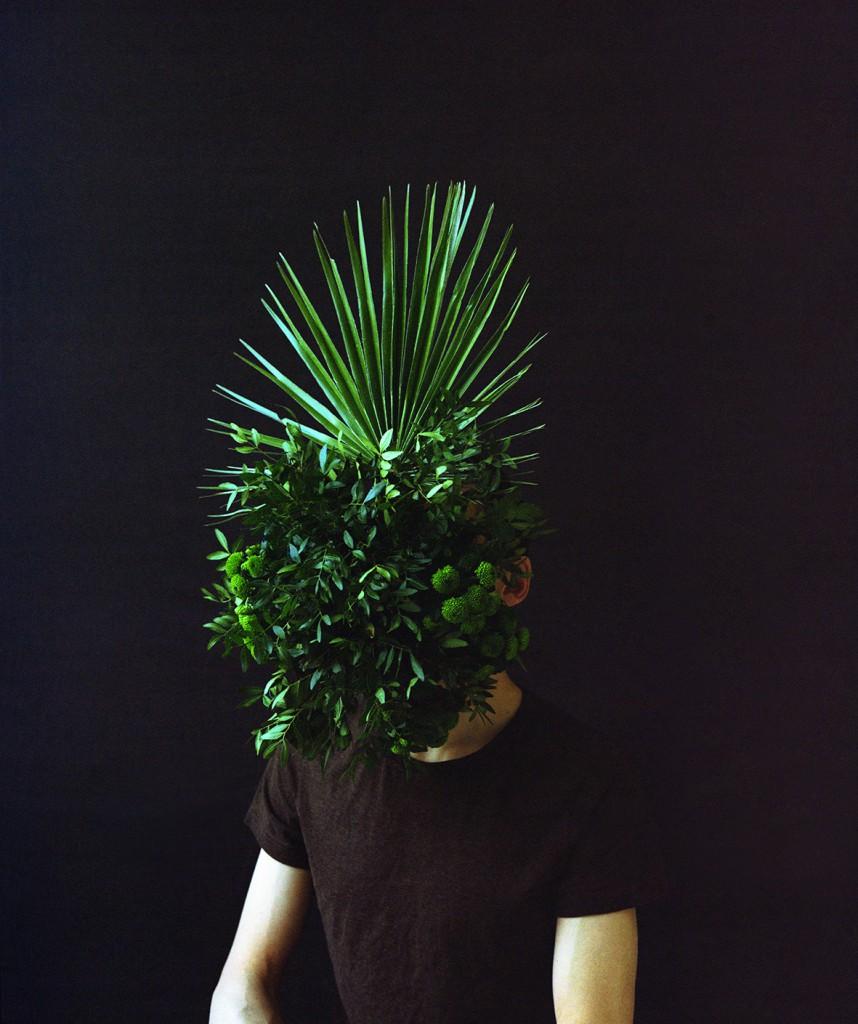 Altijd groen, Ever green, 2016